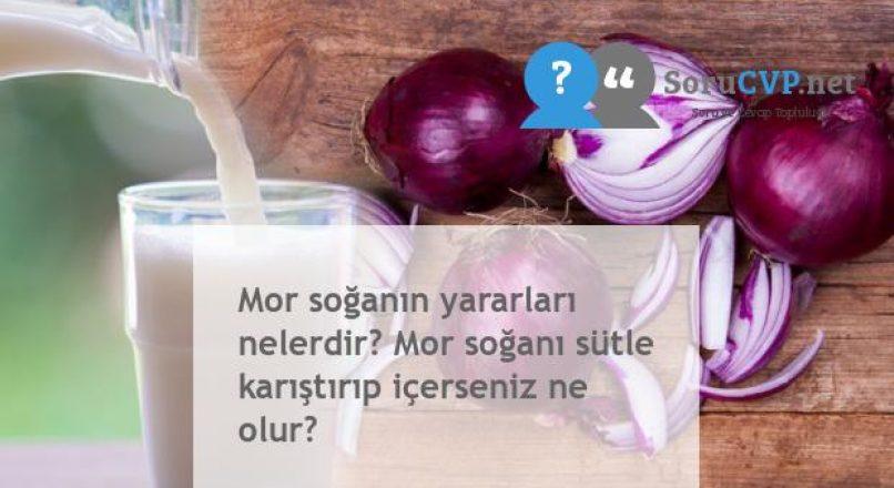 Mor soğanın yararları nelerdir? Mor soğanı sütle karıştırıp içerseniz ne olur?