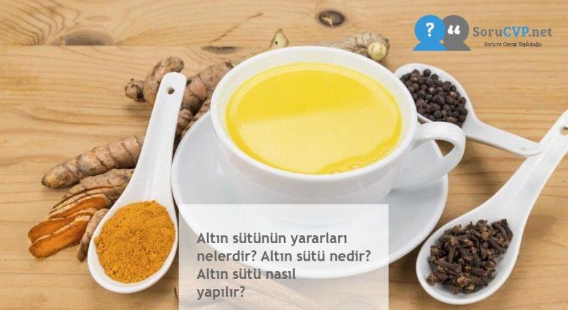 Altın sütünün yararları nelerdir? Altın sütü nedir? Altın sütü nasıl yapılır?
