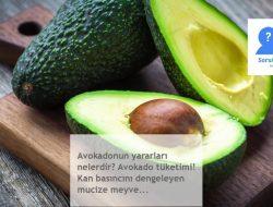 Avokadonun yararları nelerdir? Avokado tüketimi! Kan basıncını dengeleyen mucize meyve…