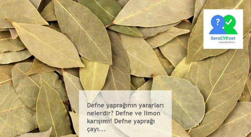 Defne yaprağının yararları nelerdir? Defne ve limon karışımı! Defne yaprağı çayı…