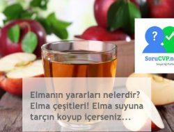 Elmanın yararları nelerdir? Elma çeşitleri! Elma suyuna tarçın koyup içerseniz…