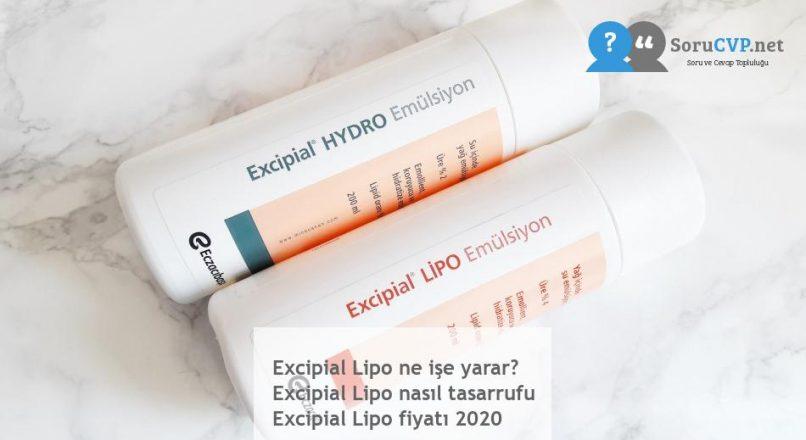 Excipial Lipo ne işe yarar? Excipial Lipo nasıl tasarrufu Excipial Lipo fiyatı 2020
