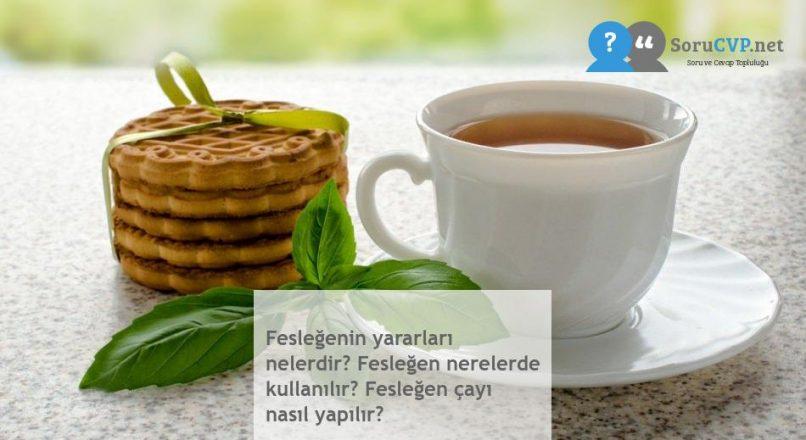 Fesleğenin yararları nelerdir? Fesleğen nerelerde kullanılır? Fesleğen çayı nasıl yapılır?