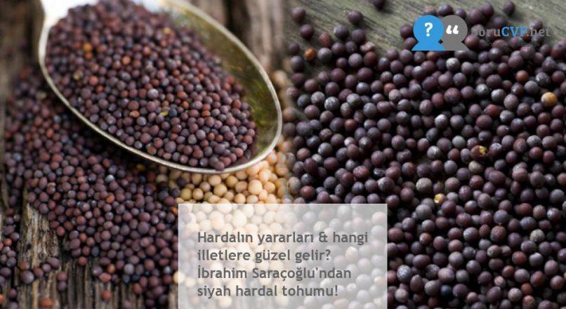 Hardalın yararları & hangi illetlere güzel gelir? İbrahim Saraçoğlu'ndan siyah hardal tohumu!