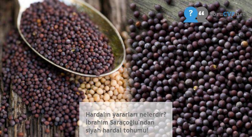 Hardalın yararları nelerdir? İbrahim Saraçoğlu'ndan siyah hardal tohumu!