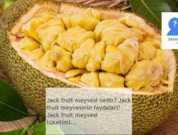 Jack fruit meyvesi nedir? Jack fruit meyvesinin faydaları! Jack fruit meyvesi tüketimi…
