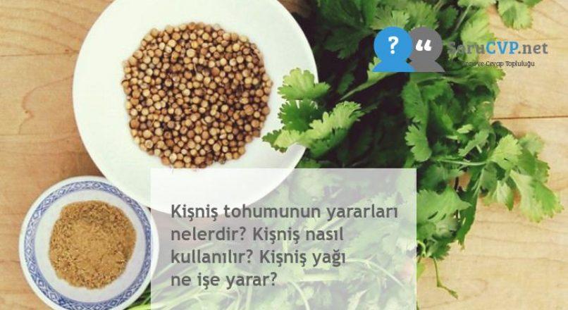 Kişniş tohumunun yararları nelerdir? Kişniş nasıl kullanılır? Kişniş yağı ne işe yarar?