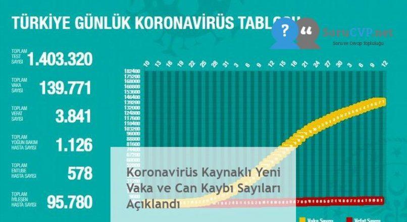 Koronavirüs Kaynaklı Yeni Vaka ve Can Kaybı Sayıları Açıklandı