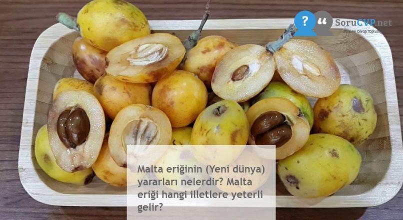 Malta eriğinin (Yeni dünya) yararları nelerdir? Malta eriği hangi illetlere yeterli gelir?