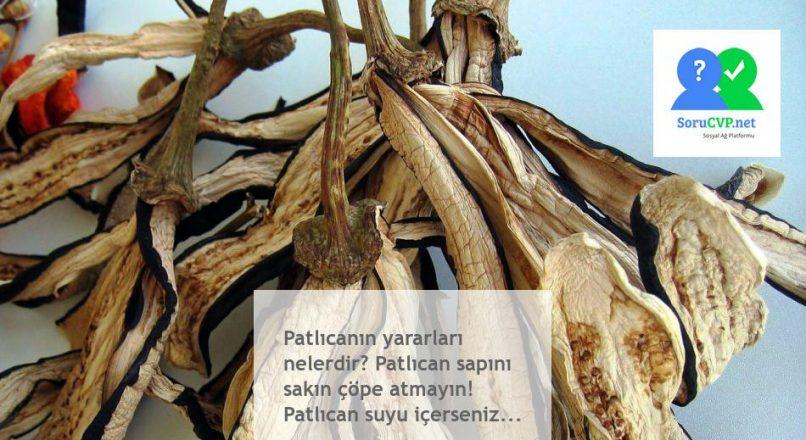 Patlıcanın yararları nelerdir? Patlıcan sapını sakın çöpe atmayın! Patlıcan suyu içerseniz…