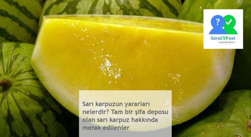 Sarı karpuzun yararları nelerdir? Tam bir şifa deposu olan sarı karpuz hakkında merak edilenler