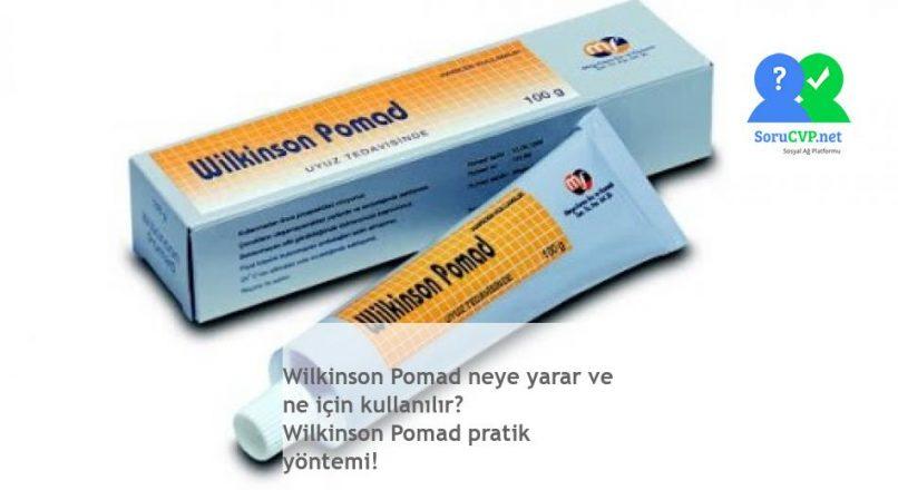Wilkinson Pomad neye yarar ve ne için kullanılır? Wilkinson Pomad pratik yöntemi!