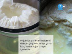 Yoğurdun yararları nelerdir? Mesken yoğurdu ne işe yarar & Aç karna yoğurt suyu içerseniz…