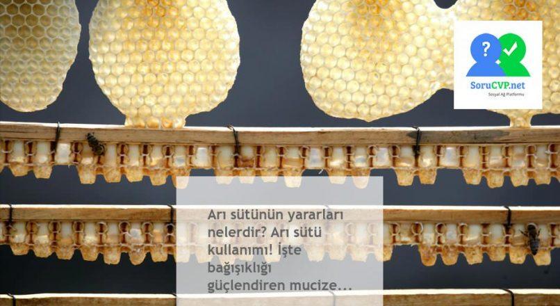 Arı sütü'nün yararları nedir, nasıl kullanılır? Resmen Mucize!