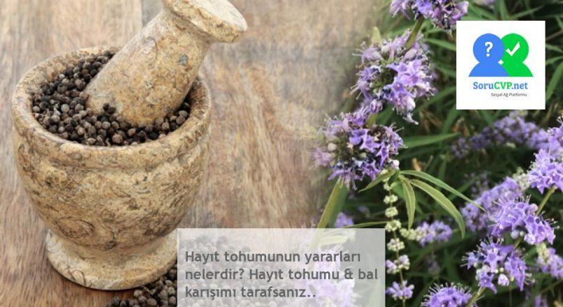 Hayıt tohumunun yararları nelerdir? Hayıt tohumu & bal karışımı tarafsanız..