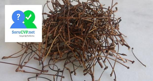 Kiraz Sapı Çayı Tarifi (Bir kişilik)