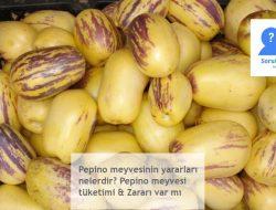 Pepino meyvesi: Yararları nelerdir, nasıl tüketilir, zararlımıdır?