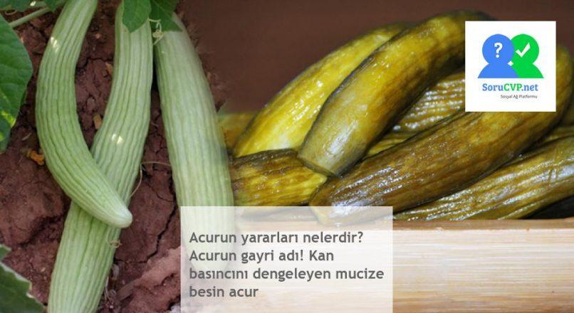 Acurun yararları nelerdir? Mucizevi besin kaynağı barındıran Acur